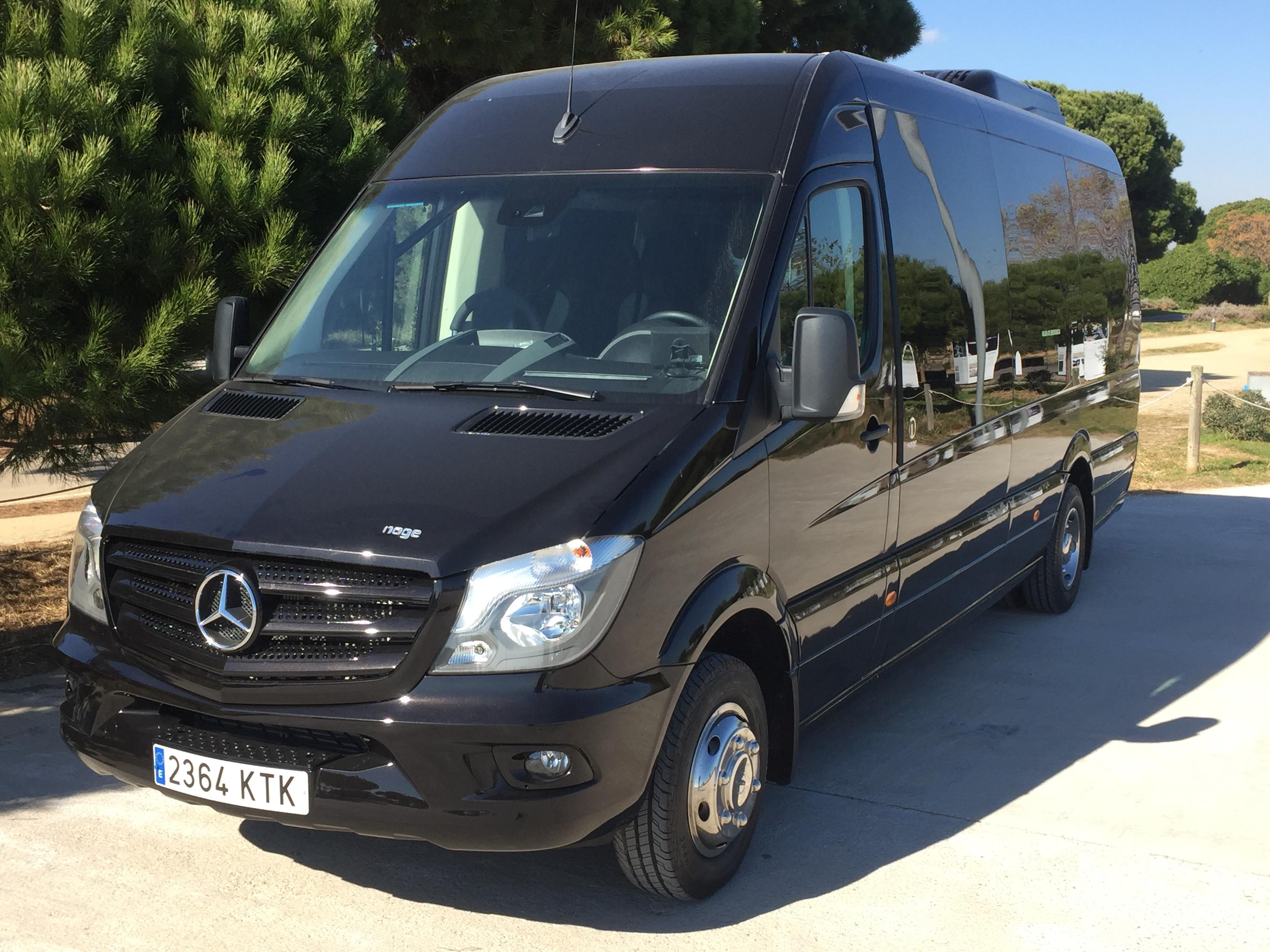 Mercedes 19